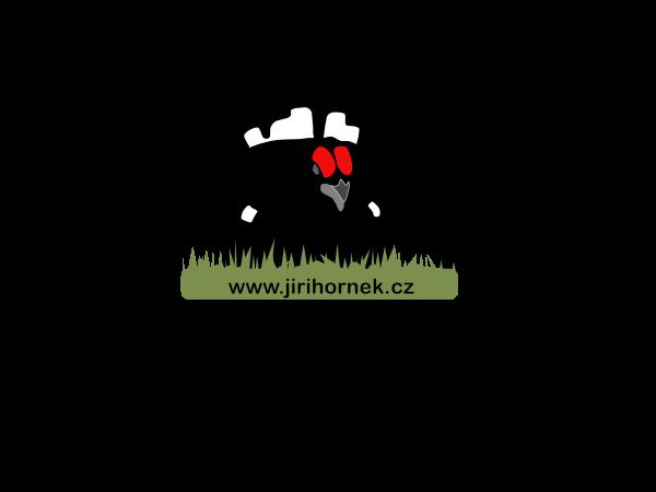 Jiří Hornek Logo